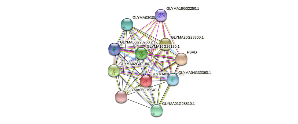 GLYMA03G42310.1 protein (Glycine max) - STRING interaction network