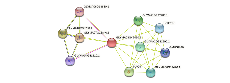 GLYMA03G42450.1 protein (Glycine max) - STRING interaction network