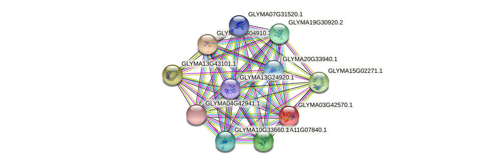 GLYMA03G42570.1 protein (Glycine max) - STRING interaction network