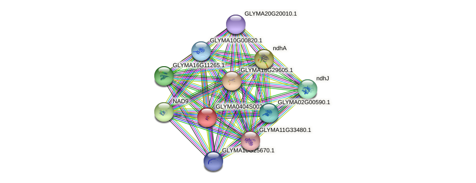 GLYMA0404S00200.1 protein (Glycine max) - STRING interaction network
