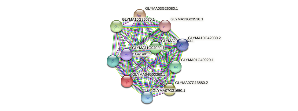 GLYMA04G00360.1 protein (Glycine max) - STRING interaction network
