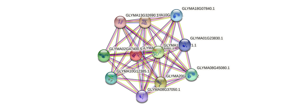 GLYMA04G03080.1 protein (Glycine max) - STRING interaction network