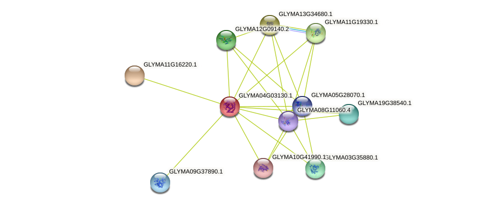 GLYMA04G03130.1 protein (Glycine max) - STRING interaction network