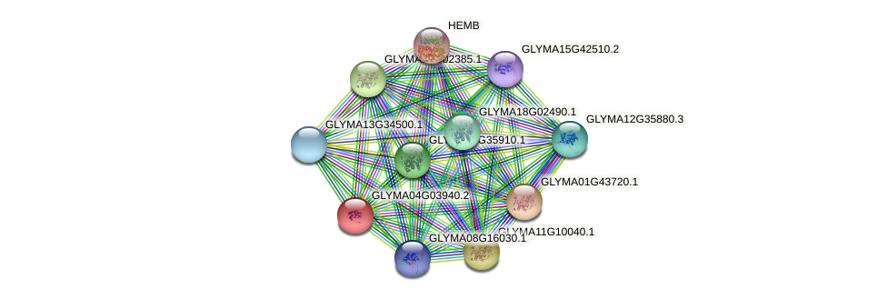 GLYMA04G03940.2 protein (Glycine max) - STRING interaction network