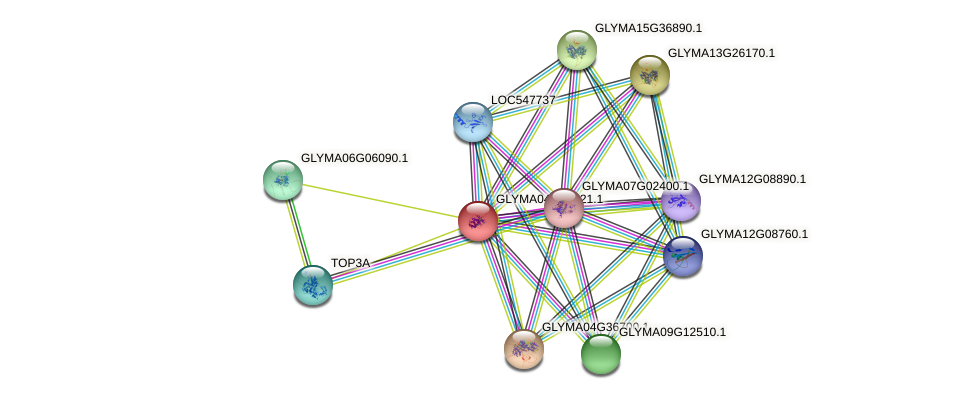 GLYMA04G04821.1 protein (Glycine max) - STRING interaction network