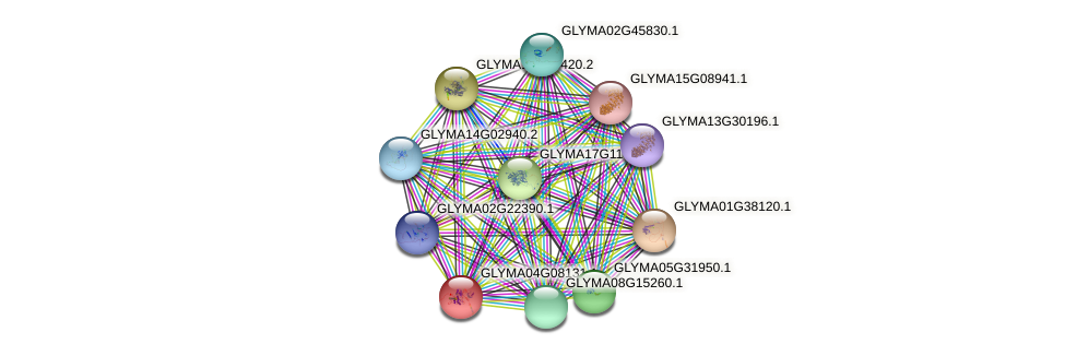 GLYMA04G08131.1 protein (Glycine max) - STRING interaction network