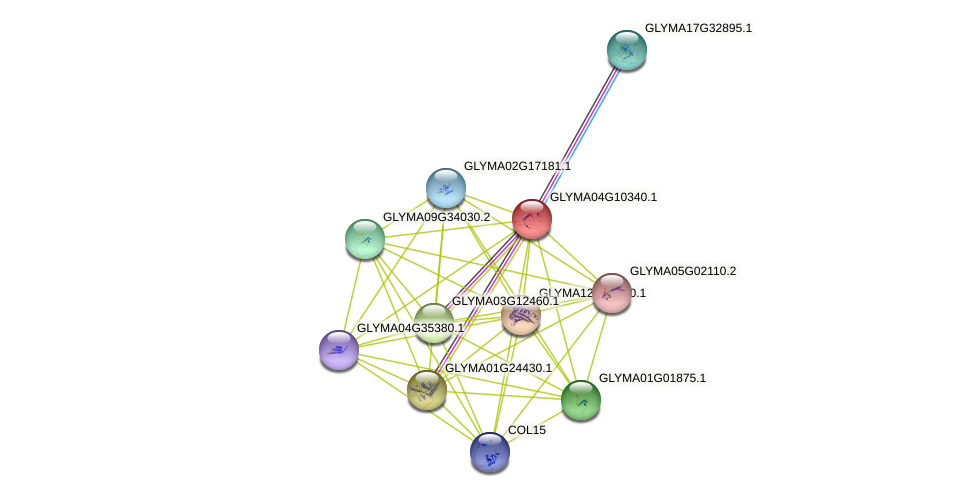 GLYMA04G10340.1 protein (Glycine max) - STRING interaction network