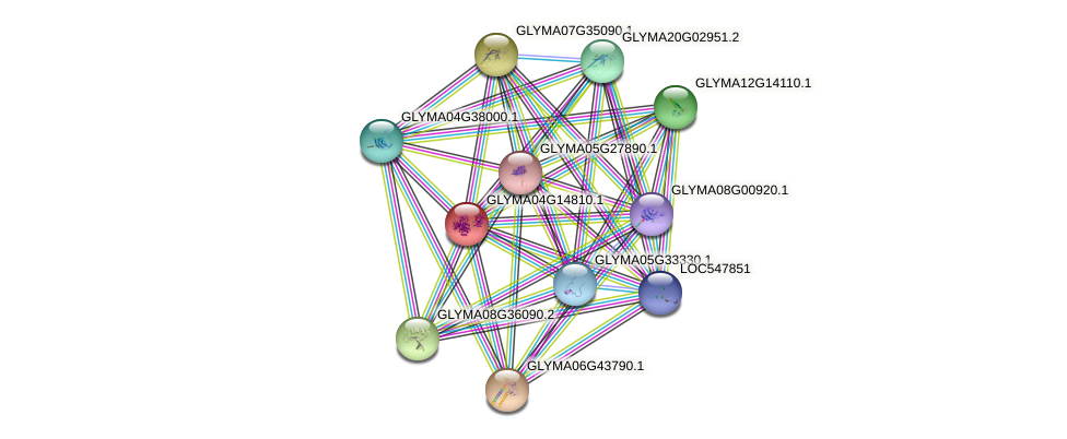 GLYMA04G14810.1 protein (Glycine max) - STRING interaction network