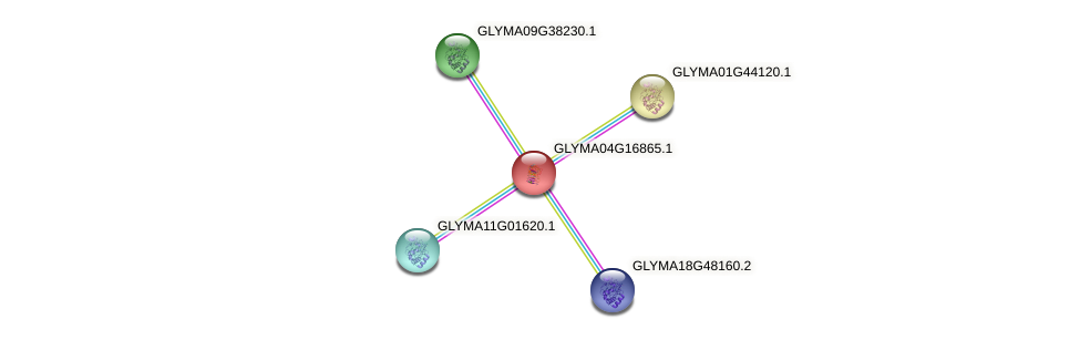 GLYMA04G16865.1 protein (Glycine max) - STRING interaction network