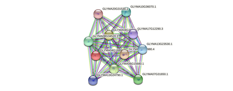 GLYMA04G16890.1 protein (Glycine max) - STRING interaction network