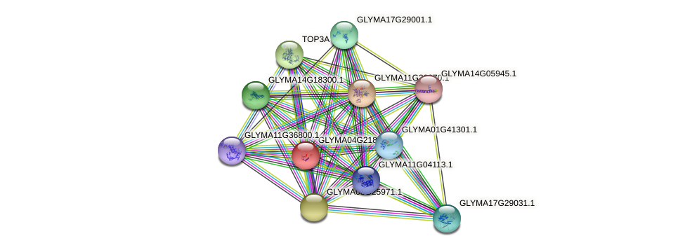 GLYMA04G21826.1 protein (Glycine max) - STRING interaction network