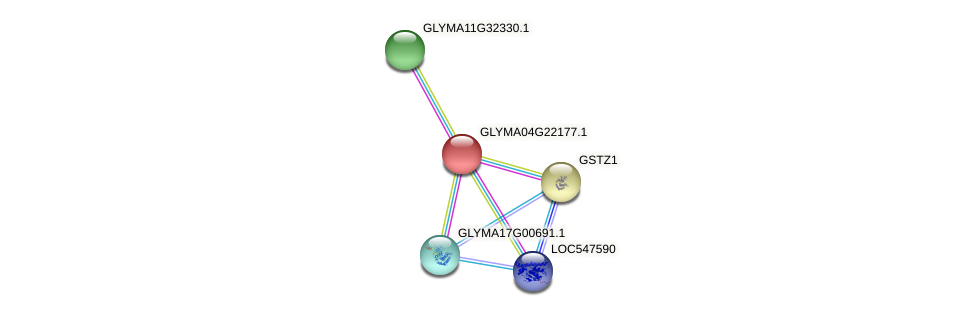 GLYMA04G22177.1 protein (Glycine max) - STRING interaction network
