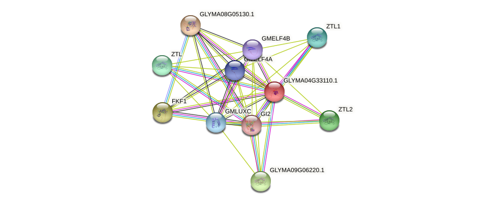 GLYMA04G33110.1 protein (Glycine max) - STRING interaction network