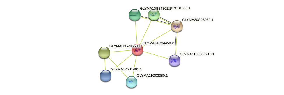GLYMA04G34450.2 protein (Glycine max) - STRING interaction network
