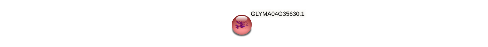 GLYMA04G35630.1 protein (Glycine max) - STRING interaction network