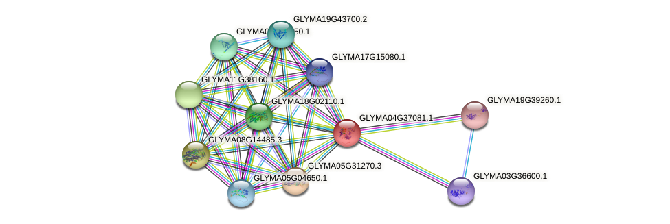 GLYMA04G37081.1 protein (Glycine max) - STRING interaction network