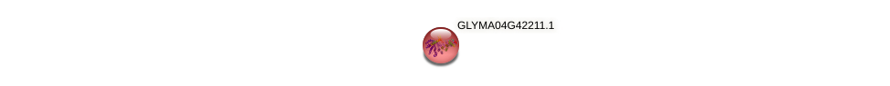 GLYMA04G42211.1 protein (Glycine max) - STRING interaction network