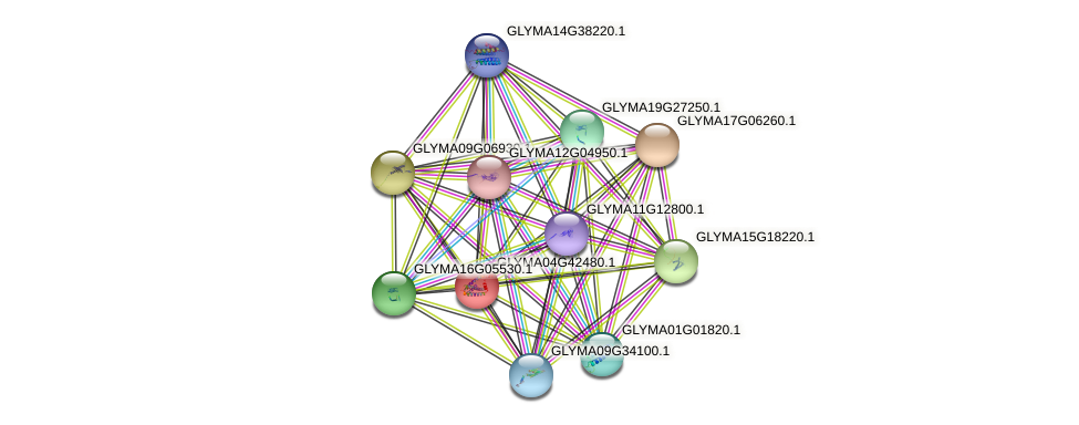 GLYMA04G42480.1 protein (Glycine max) - STRING interaction network