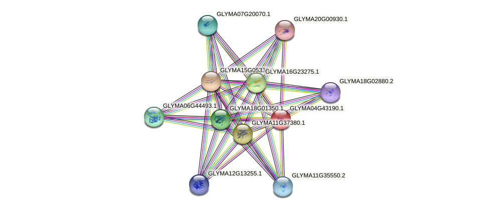 GLYMA04G43190.1 protein (Glycine max) - STRING interaction network