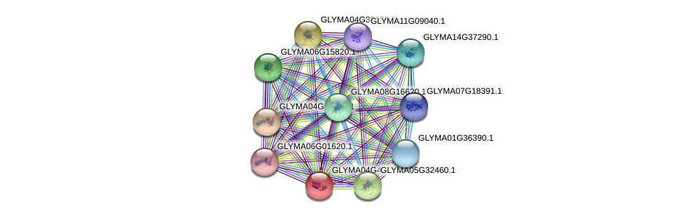 GLYMA04G43230.1 protein (Glycine max) - STRING interaction network