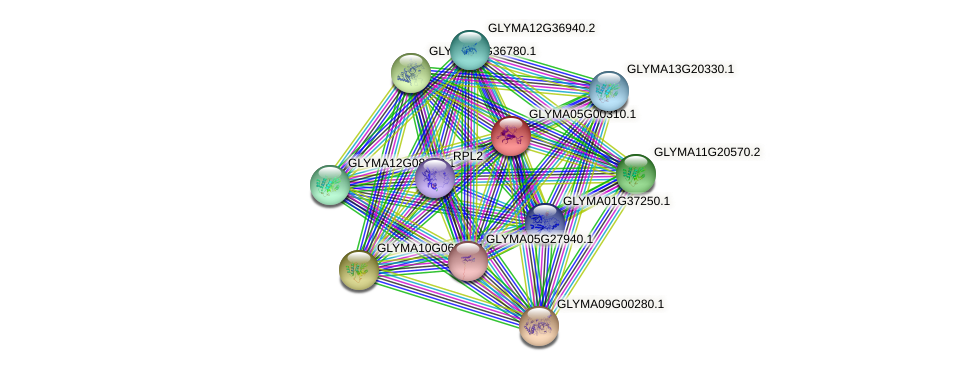 GLYMA05G00310.1 protein (Glycine max) - STRING interaction network