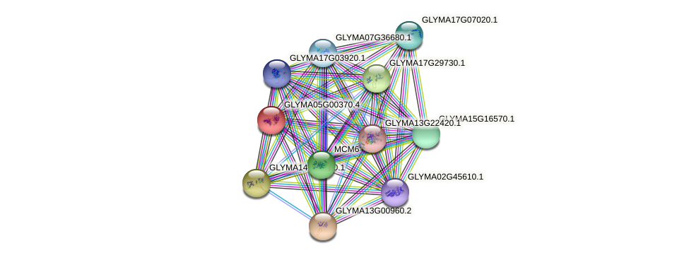 GLYMA05G00370.2 protein (Glycine max) - STRING interaction network