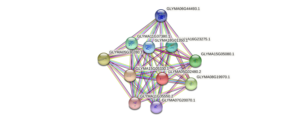 GLYMA05G02480.2 protein (Glycine max) - STRING interaction network