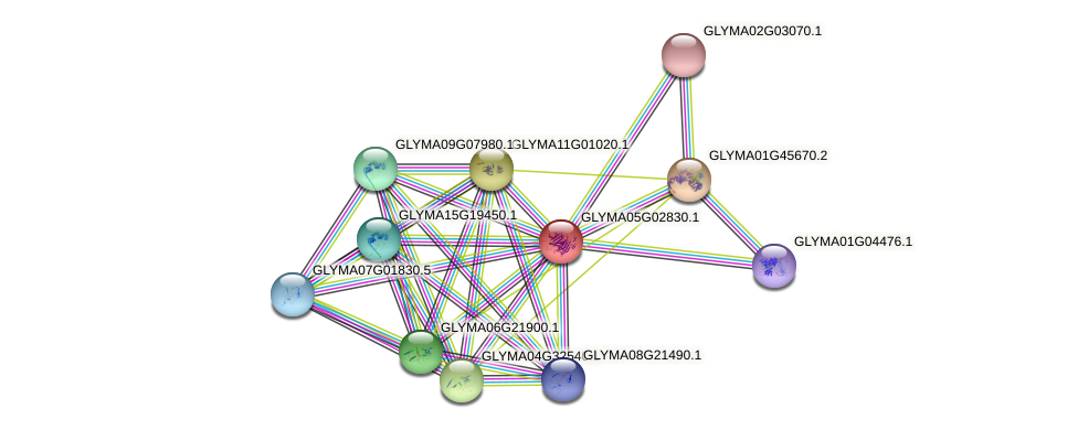 GLYMA05G02830.1 protein (Glycine max) - STRING interaction network