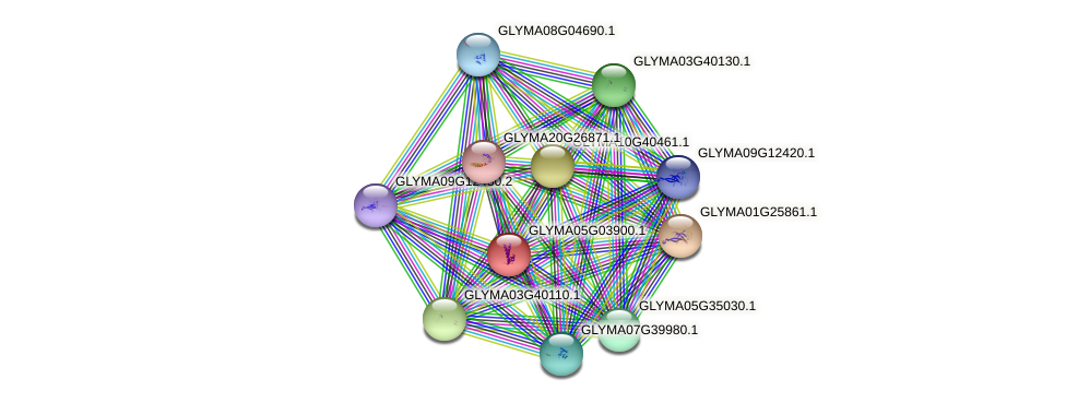 GLYMA05G03900.1 protein (Glycine max) - STRING interaction network