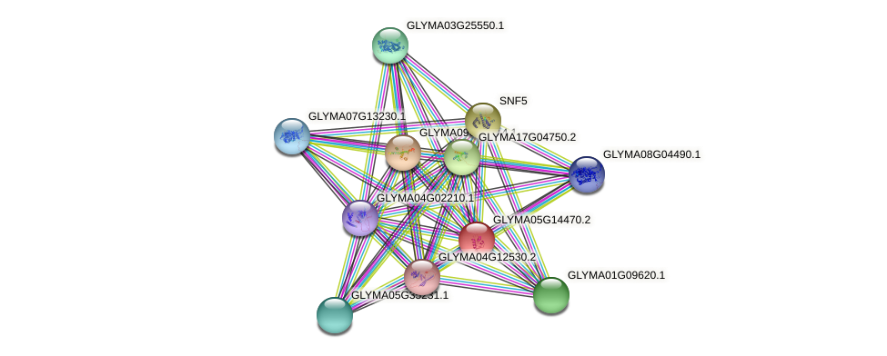 GLYMA05G14470.2 protein (Glycine max) - STRING interaction network