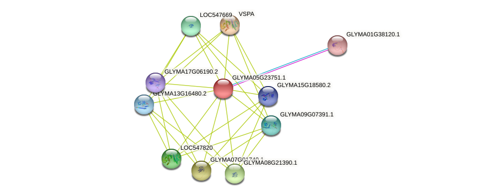 GLYMA05G23751.1 protein (Glycine max) - STRING interaction network