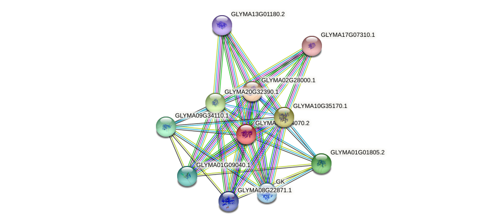 GLYMA05G24070.2 protein (Glycine max) - STRING interaction network