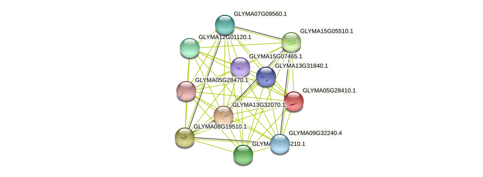 GLYMA05G28410.1 protein (Glycine max) - STRING interaction network