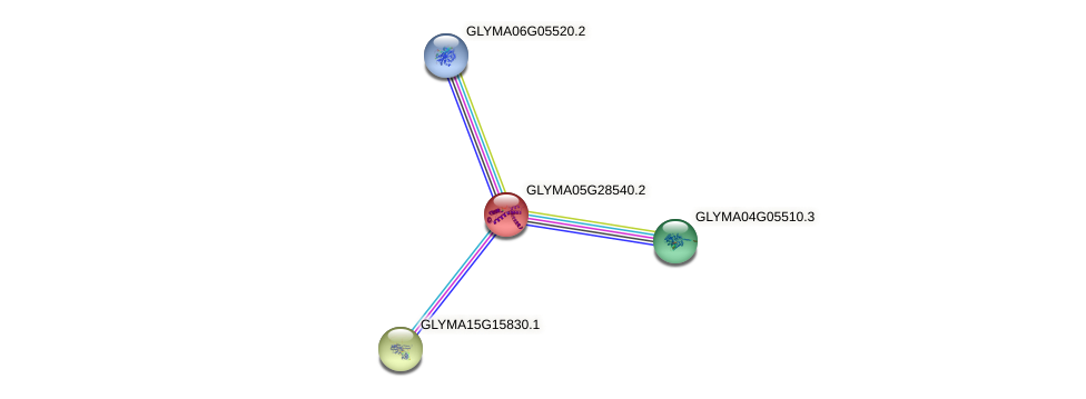 GLYMA05G28540.2 protein (Glycine max) - STRING interaction network