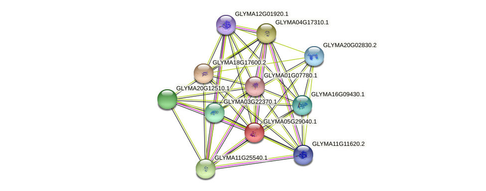 GLYMA05G29040.1 protein (Glycine max) - STRING interaction network