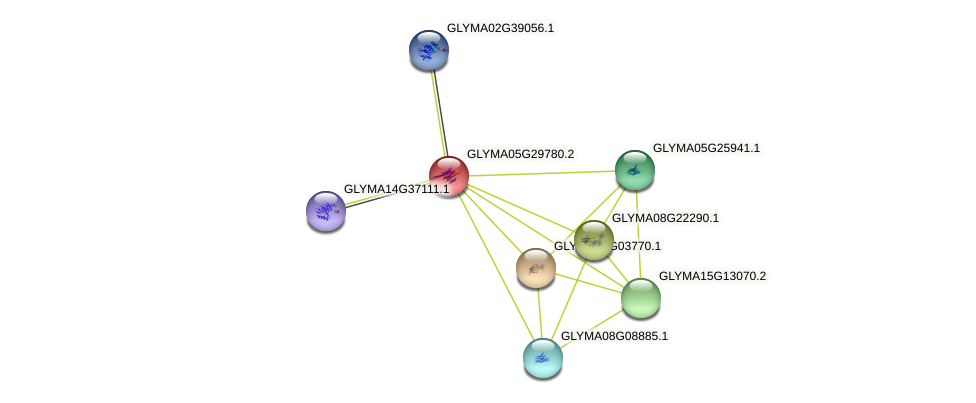 GLYMA05G29780.2 protein (Glycine max) - STRING interaction network