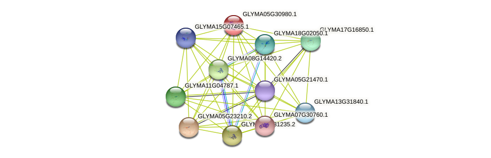 GLYMA05G30980.1 protein (Glycine max) - STRING interaction network