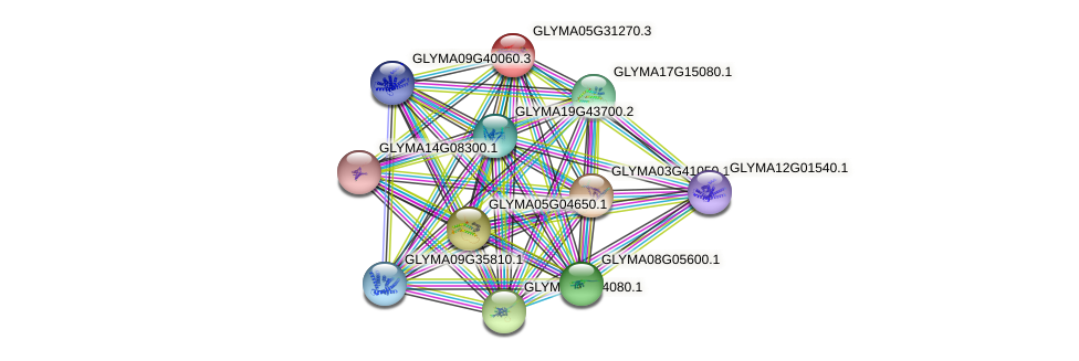 GLYMA05G31270.2 protein (Glycine max) - STRING interaction network