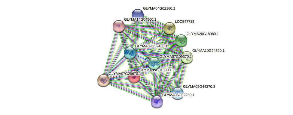 GLYMA05G31390.1 protein (Glycine max) - STRING interaction network