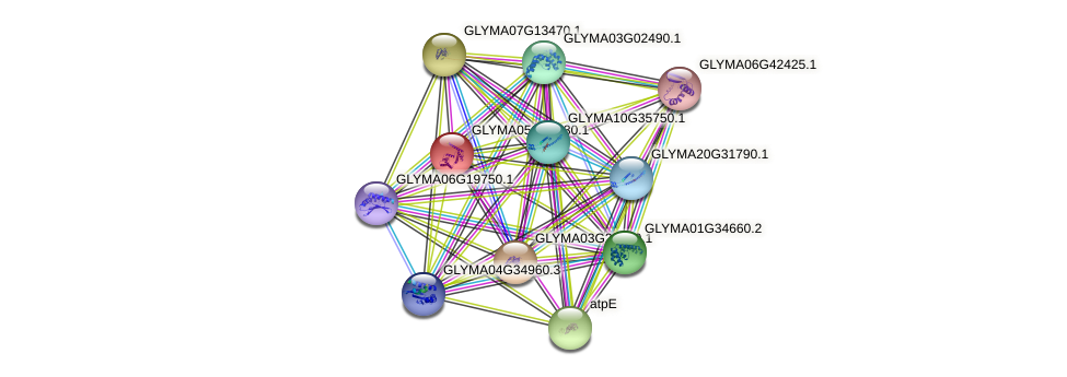 GLYMA05G31830.1 protein (Glycine max) - STRING interaction network