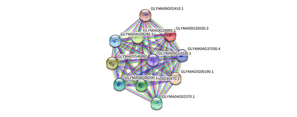 GLYMA05G32030.3 protein (Glycine max) - STRING interaction network