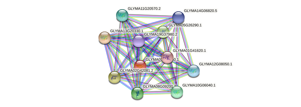 GLYMA05G36160.1 protein (Glycine max) - STRING interaction network