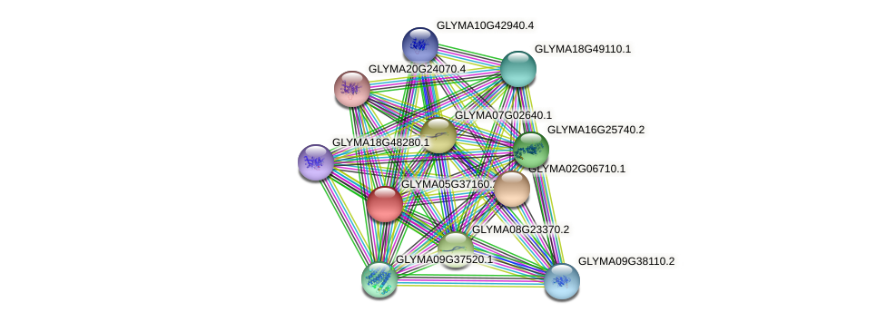 GLYMA05G37160.2 protein (Glycine max) - STRING interaction network