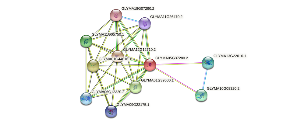 GLYMA05G37280.2 protein (Glycine max) - STRING interaction network