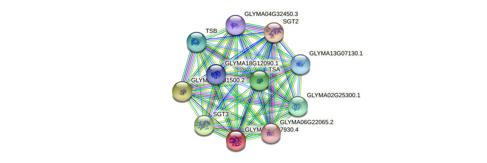 GLYMA05G37930.3 protein (Glycine max) - STRING interaction network
