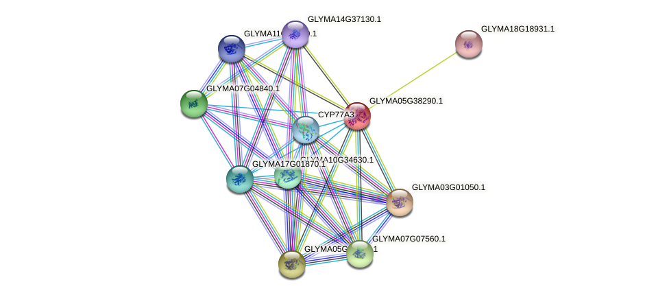 GLYMA05G38290.1 protein (Glycine max) - STRING interaction network