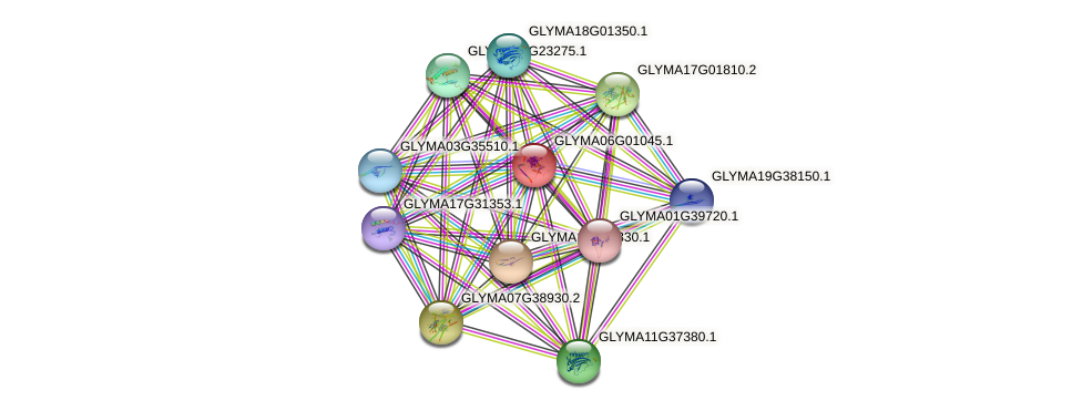 GLYMA06G01045.1 protein (Glycine max) - STRING interaction network