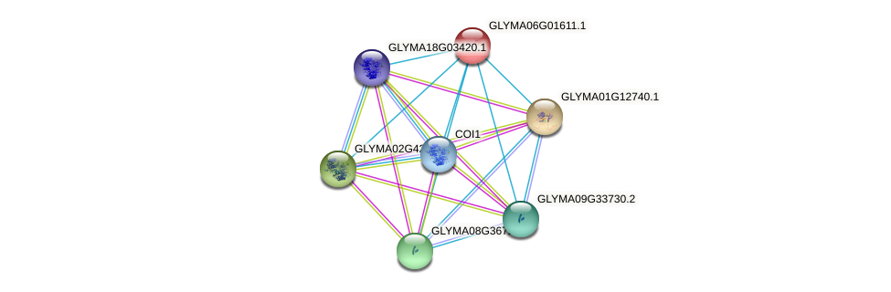 GLYMA06G01611.1 protein (Glycine max) - STRING interaction network