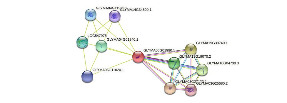 GLYMA06G01990.1 protein (Glycine max) - STRING interaction network