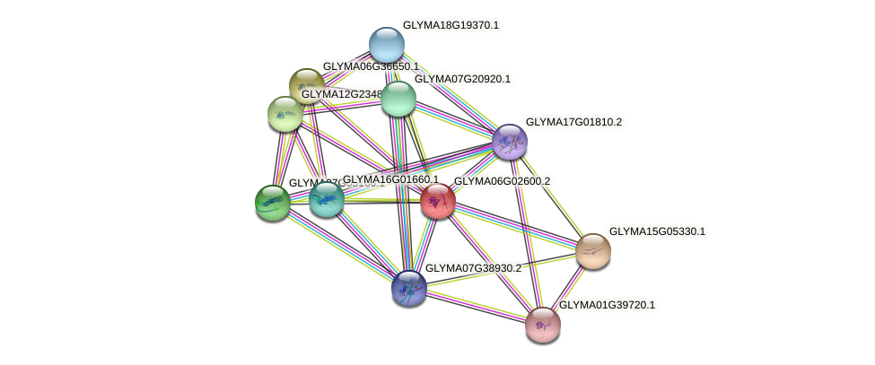 GLYMA06G02600.2 protein (Glycine max) - STRING interaction network